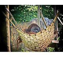 cozy spot Photographic Print