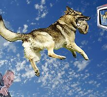 MY DOG(RICO) PASTE IN A PHOTO FROM THE SKY LOOKING TV,IN THE LEFT MYSELF  by trysocio