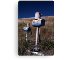 """""""War Of The Worlds"""" ? Letterboxes, Queensland Canvas Print"""