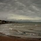 Dawlish - Devon by Craig Wilson