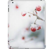Snowy Berries iPad Case/Skin