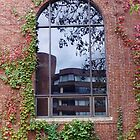 Georgetown Window by Bine