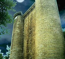 All Along the Watchtower  by Angela Harburn