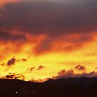 Sunset at Jindabyne by Richard  Willett