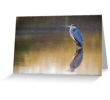 Grey Heron (Colour Pencil Effect) Greeting Card