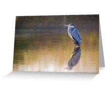 Grey Heron (Colour Pencil Effect) Greeting Card