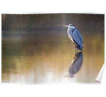 Grey Heron (Colour Pencil Effect) Poster