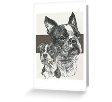 Boston Terrier, Father & Son Greeting Card
