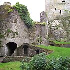 Blarney Castle by Calysar