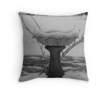 Frozen Birdbath Throw Pillow