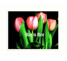 Nice is Nice  Art Print