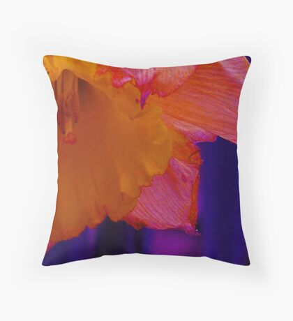 burn/fade  Throw Pillow
