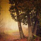 The golden path by Gisele Bedard