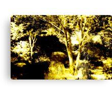 Dingle Garden Canvas Print