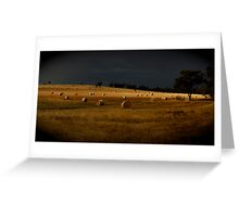 Rolled hay Greeting Card
