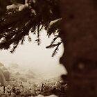 A winter day by lumiwa