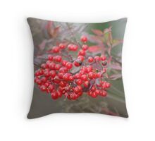 shinning berries Throw Pillow