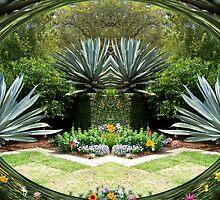 Garden Series by dmosher