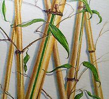 Golden Bamboo by Randy  Burns
