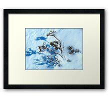 Crystal - Snowy Mountains, NSW Australia Framed Print