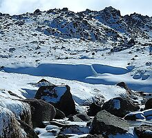 Frozen In Time- Snowy Mountains,NSW Australia by Philip Johnson