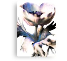 Flower 7 Canvas Print