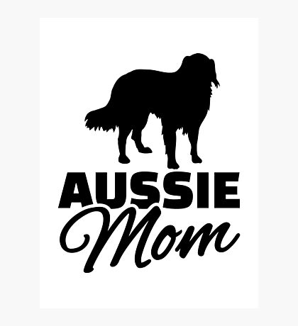 Aussie Australian shepherd Mom Photographic Print
