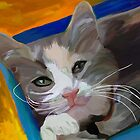 Cat in the Box by Patti Siehien