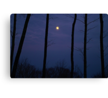 Vermont Moonlight Silhouette Canvas Print