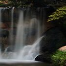 Beautiful Waterfall by Debbie Sickler
