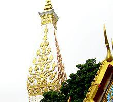 Prathatphanom Pagoda by apisit