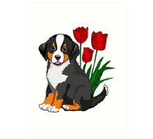 Bernese Mountain dog puppy with tulips Art Print
