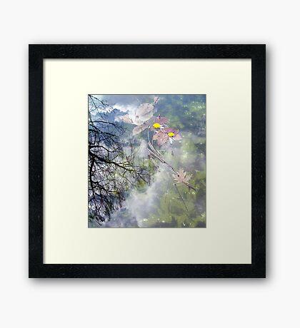 the four seasons Framed Print