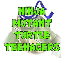 Ninja Mutant Turtle Teenagers Leonardo Photographic Print