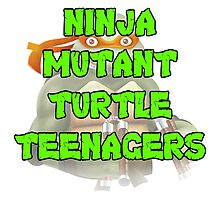 Ninja Mutant Turtle Teenagers Michelangelo Photographic Print