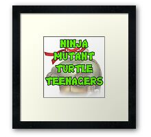 Ninja Mutant Turtle Teenagers Raphael Framed Print