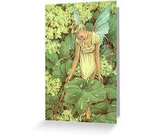 Dew Fairy Greeting Card
