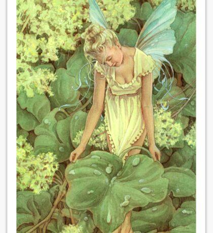Dew Fairy Sticker
