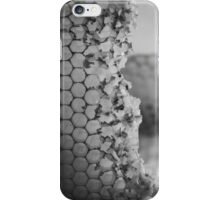 At the Honeycomb's Edge iPhone Case/Skin