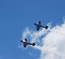 Stunt Planes Side by Side by Fangs