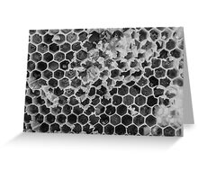 Imperfect Honeycomb Greeting Card