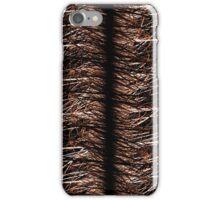 Kepler Curves iPhone Case/Skin
