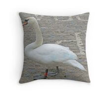 A Mute Swan of the Urban Kind Throw Pillow