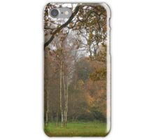 Natural fall framing iPhone Case/Skin