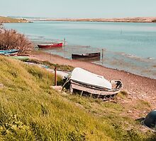 Boats on the Fleet Dorset UK by Pauline Tims