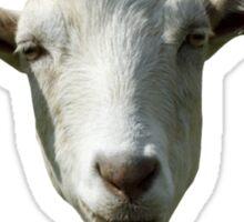 I crave that mineral - Goat Meme Sticker