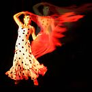 Flamenco Fire by nomes