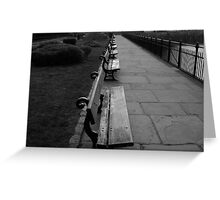 Park Benches Greenwich Greeting Card