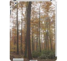 Into the mist of autumn trees iPad Case/Skin