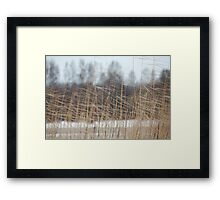 cold winter wind Framed Print